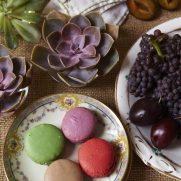 NYC Macaroons and succulent tablescape deserts